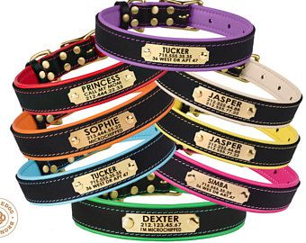 Dog Collar Leather Personalized Brass Buckle Red Brown Black