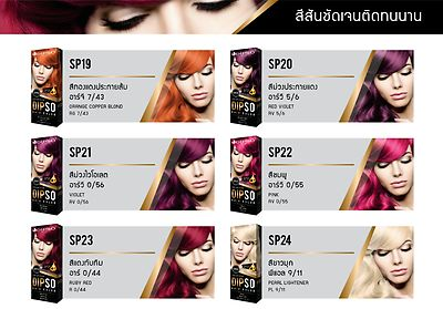 DIPSO-DIRECTIONS-HAIR-DYE-COLOR-CHOOSE-ALL-COLOURS-hair-color-with-coditioner