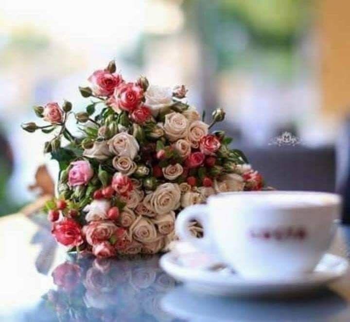 مـا أجمـل أن تقول في هذا الصباح يا خالق الراحة وكلتك أمري واستودعتك هم ي فبشرني بمايفتح مداخل السعادة في قلبي يسعد صباحكم Cafe Cafe