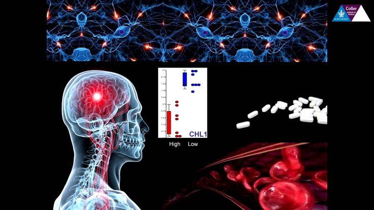 Deep Innovation via Deep Sequencing – Dr. Noam Shomron
