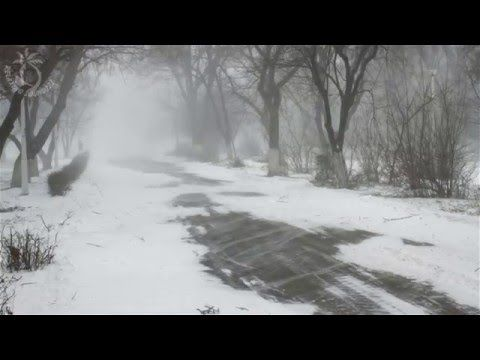 Winter Storm Sound - 8 Hours Of Ambient Snowstorm, Blizzard Sounds, Heavy Wind For Relaxation - YouTube