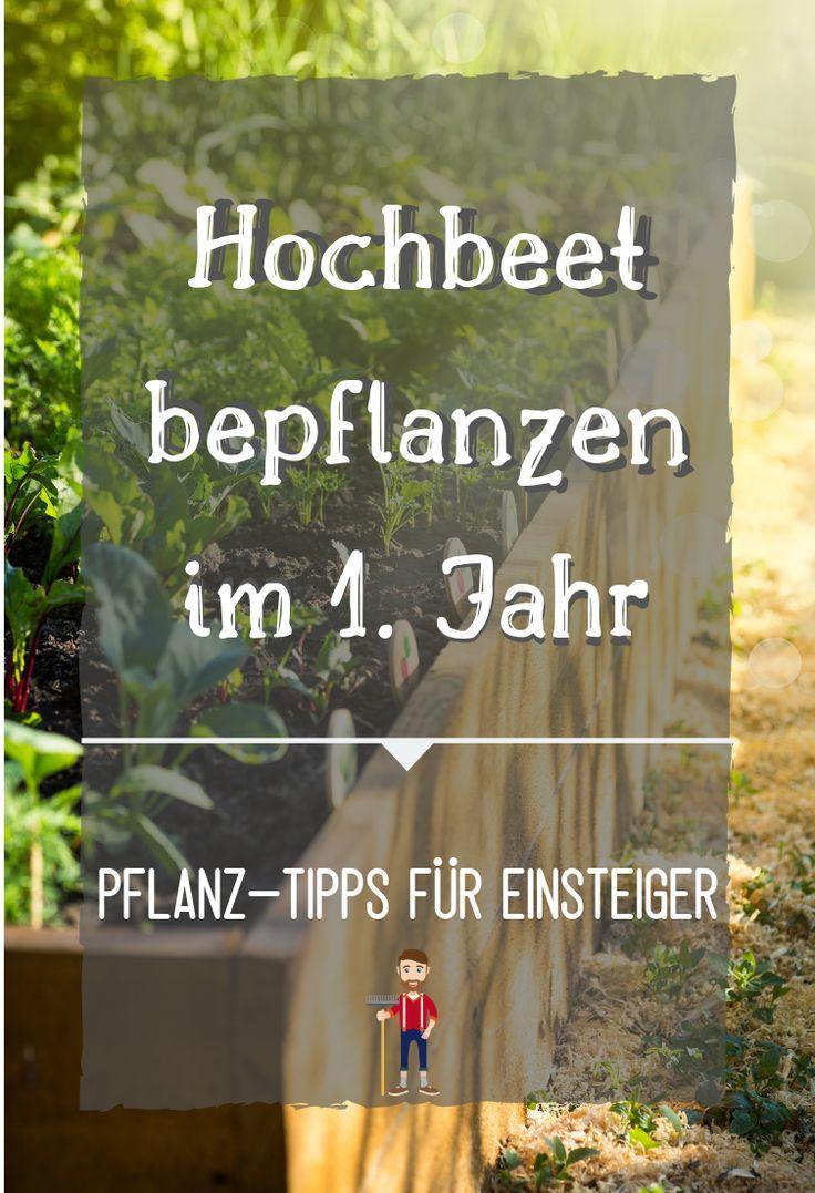 Hochbeet Bepflanzen Pflanzplan Mischkultur Grundungung Hochbeet Bepflanzen Garten Hochbeet Hochbeet