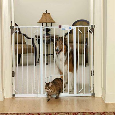 small pet gates indoor