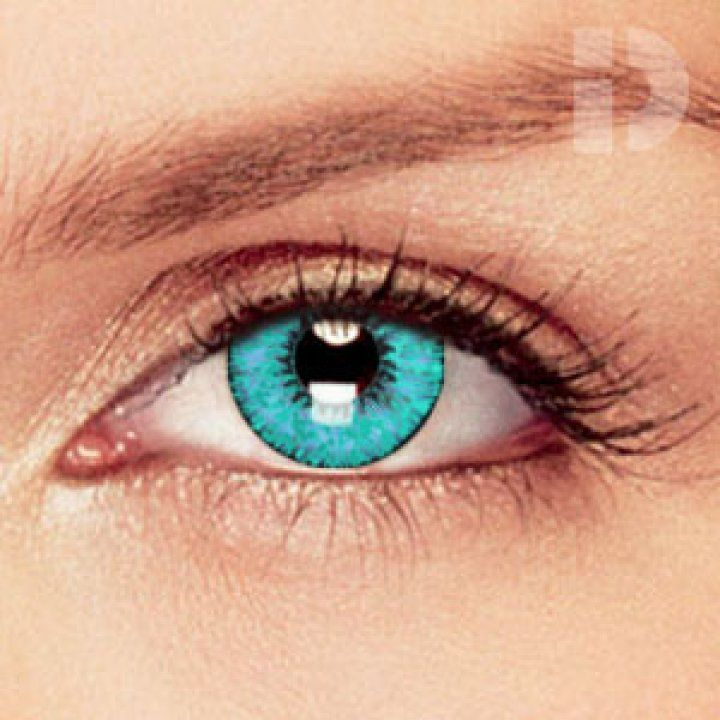 Eyes Light Blue Brown Color Contacts Best