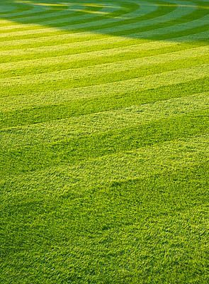 Worcester College, Oxford: The Front Quadrangle With Beautifully Striped Lawn In Evening Light