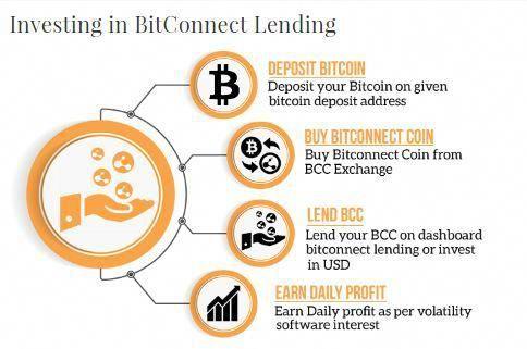Bitbays.com daily interest invest bitcoin