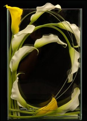 yellow and cream calla lilies.Ideas, Floral Design, Calla Lilies, Flowerarrangements, Flower Arrangements, Calla Lilly, Floral Arrangements, Centerpieces, Unusual Flower