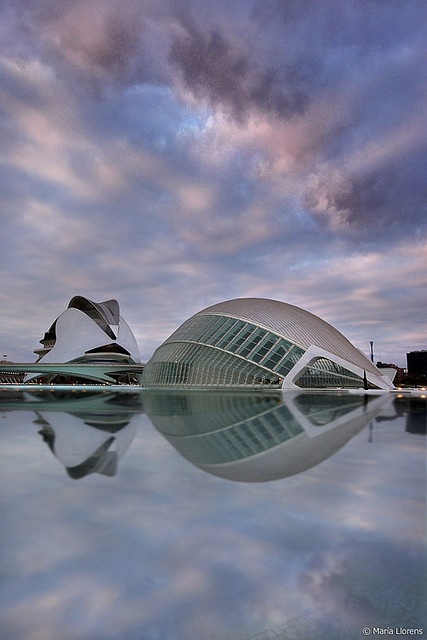 I have zero clue what that thing is but its cool and I like it.  Ciudad de las Artes y las Ciencias, Valencia, Sapin