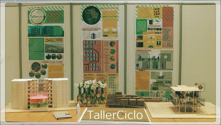 Entrega taller 7mo - Proyecto de grado -TallerCiclo