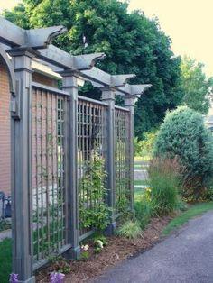 Driveway privacy trellis