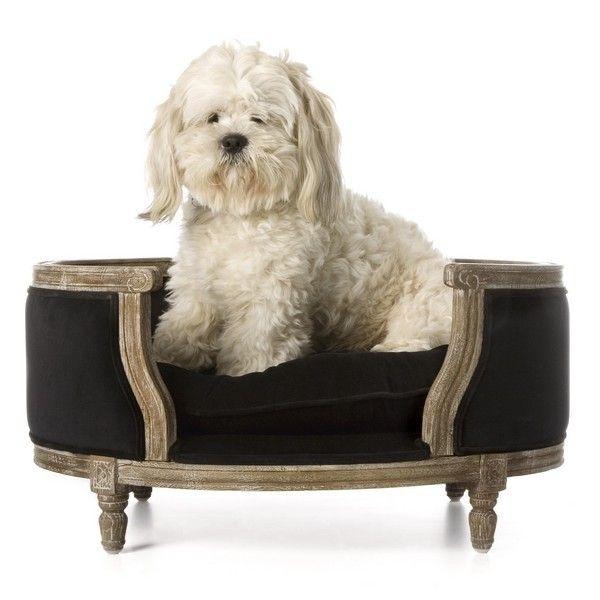 panier chien #dog #cute