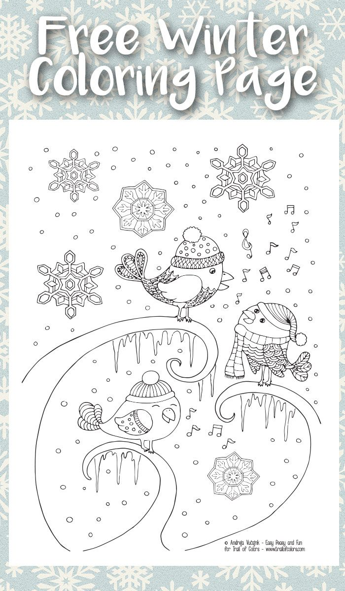 Winter flower coloring pages - Singing Birds Winter Coloring Page For Adults