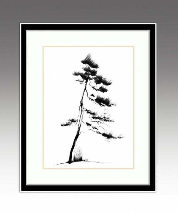 Pine. Pines Series (Option 2).