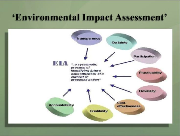 Environmental Impact Assessment- a visual of the process of an environmental impact assessment process.