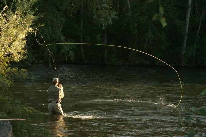 43 best images about idaho fly fishing on pinterest for Fly fishing idaho