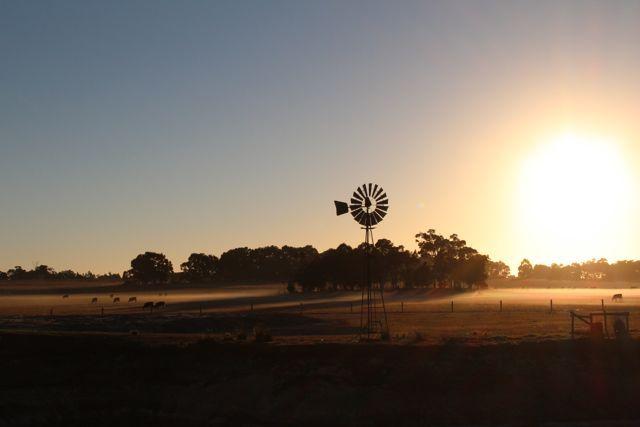 Sunrise, Taunton Farm Caravan Park, WA