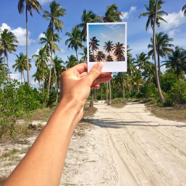 Ahoj ze Zanzibaru! #zanzibar #vyvolejto #vyvolejtocestuje #polaroid #photos