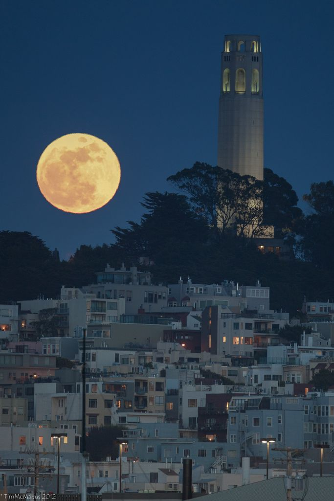 Coit Tower San Francisco by Tim McManus
