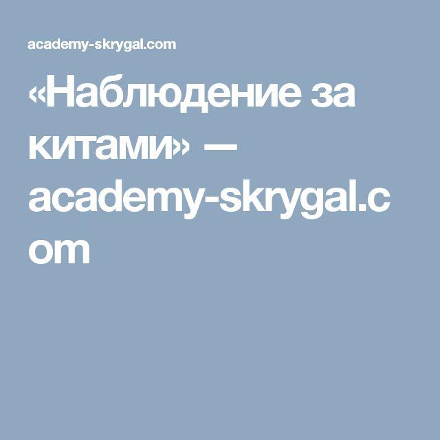 «Наблюдение за китами» — academy-skrygal.com