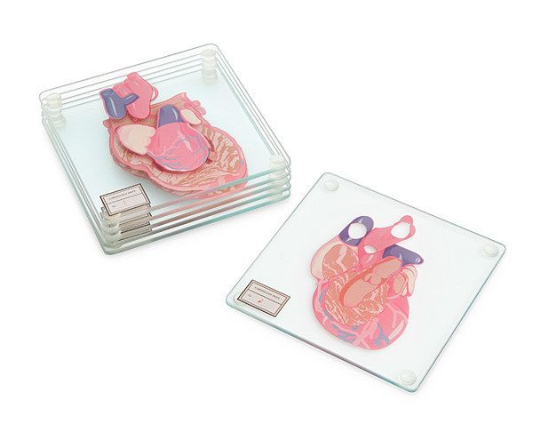 Anatomic Heart Specimen Glass Coasters | 31 Delightfully Weird Gifts For All The Medical Nerds In Your Life