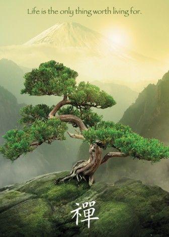 Zen Góra, Drzewo - plakat - 100x140 cm  Gdzie kupić? www.eplakaty.pl