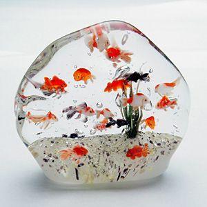 金魚・凍金魚・金魚石 - タウンインフォメーション