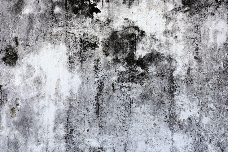 Makro Textur Fragment Der Alten Weiß-graue Wand Mit Schimmel Lizenzfreie Fotos…