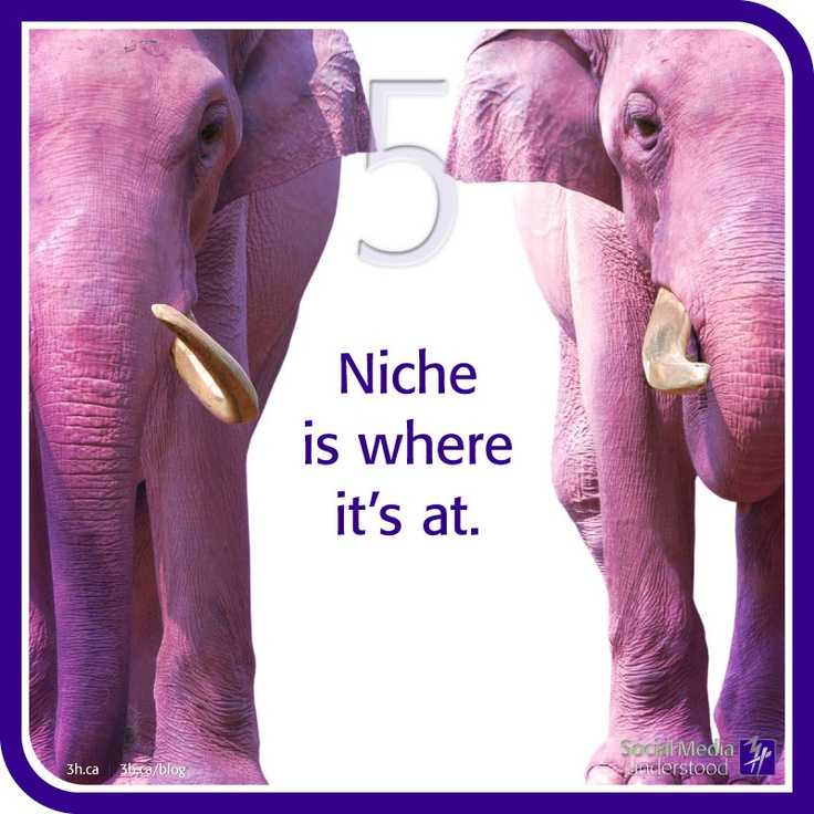 Niche is where it's at. This is an important fact about utilizing social media because, truly, finding your niche is finding your community.  If you want to push a product or idea you've got to speak the same language as your customers and online fans. When you find your grove, don't leave it – build on it. http://3h.ca/ebook_social_media.php