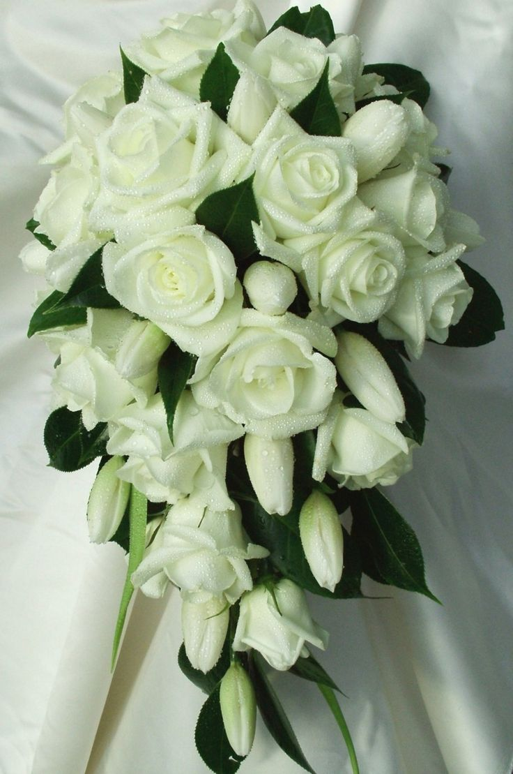 56 best wedding flowers gold coast images on gold