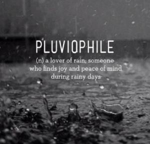 """For those who are interested, """"pluviophile"""" is derived from the word """"pluvial""""  which means """"of or relating to rain"""" or """"characterized by abundant rain"""". Adding """"phile"""" to the end of a word is an indication of love and adoration and is derived from the Greek word """"philos""""  which literally means 'loving'.  ...."""
