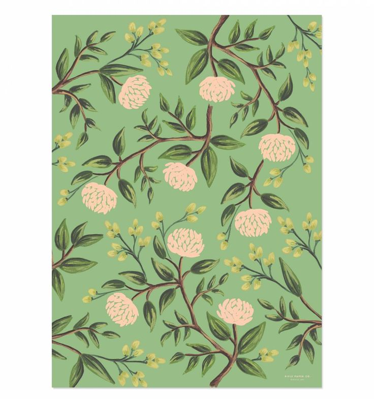 Emerald Peonies Set of 3 Rolled Wrapping Sheets - wrapping paper as drawer liner?