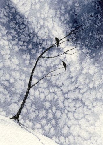 2 blackbirds snow by David Hayward, he used salt technique to make this snowy image.