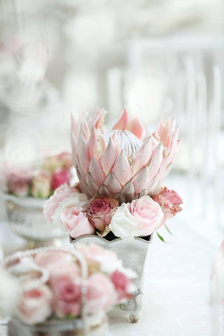 Protea & roses. Annelien & MJ wedding