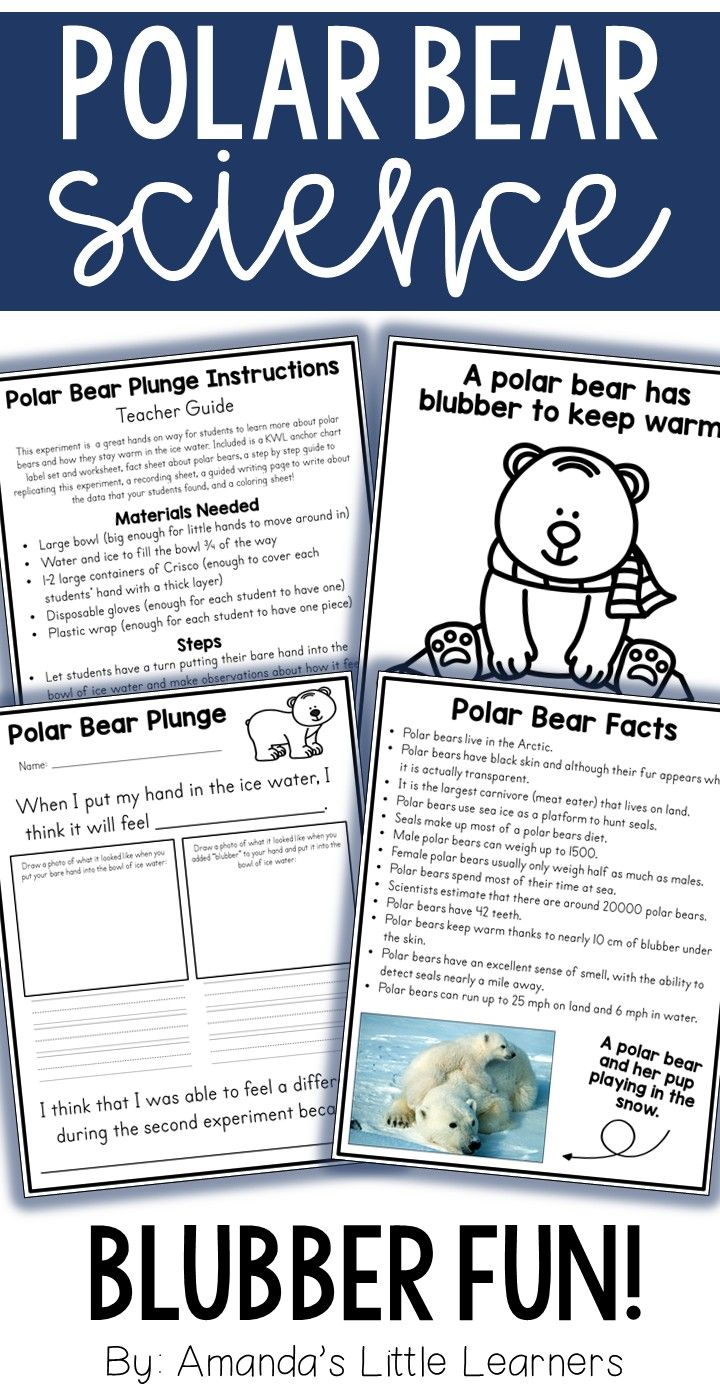 Flashcardstoys X in addition Panda Tracing Page together with Original as well Asia Black Bear Coloring Page Pages furthermore Spring Assessment Phonemic Awareness Rhyming. on little bear worksheets