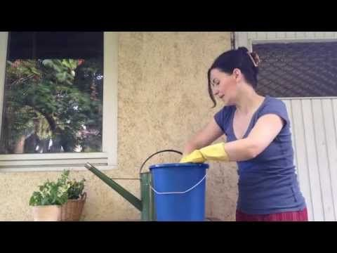 Csalán-trágyalé készítése - A növényi immunerősítő - YouTube