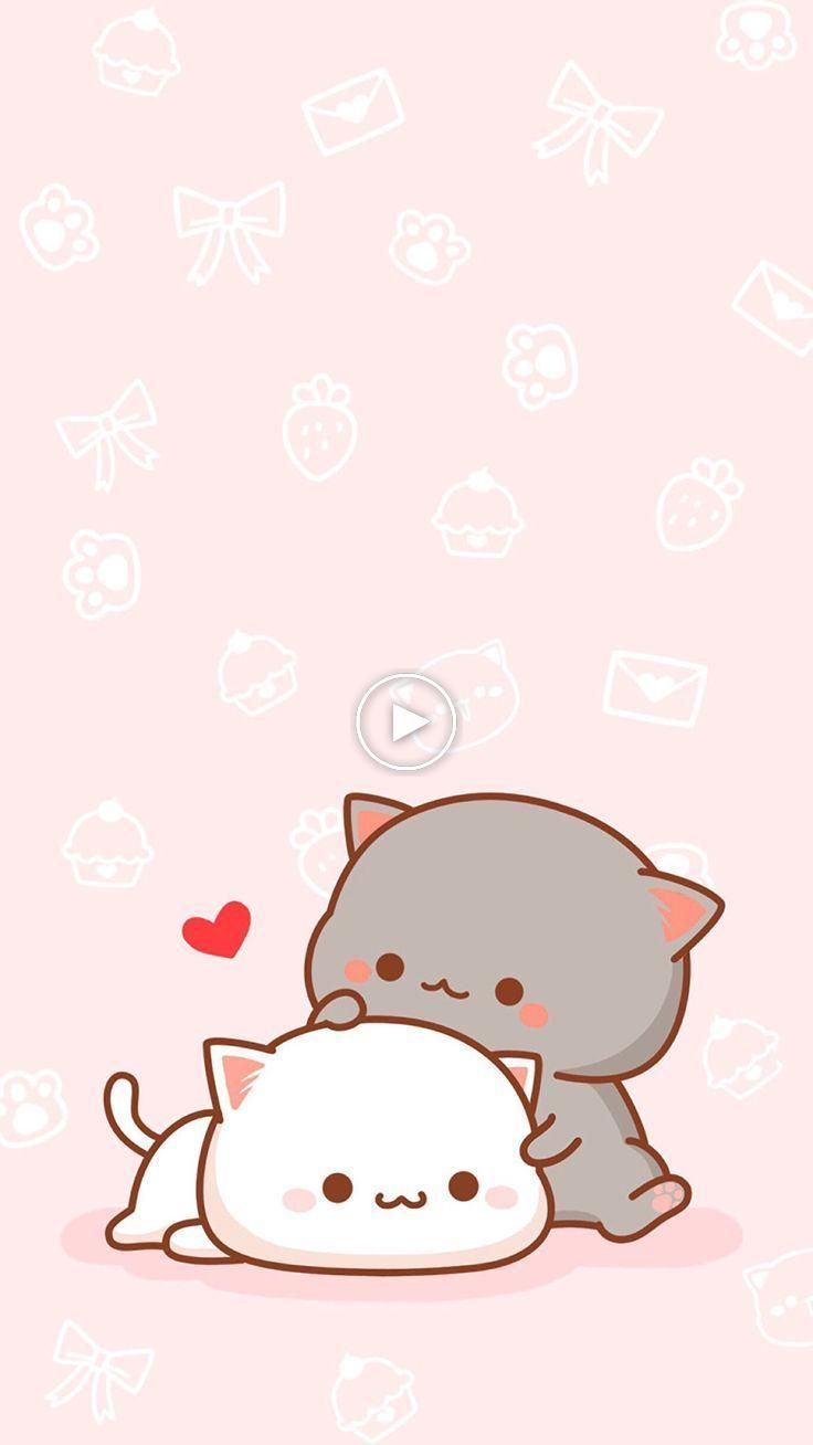 Awwwwwwwwwwwwwwwwww Awwwwwwwwwwwwwwwwww Tumblrwallpapers Wallpapers Lockscreen Cute Cartoon Wallpapers Cute Cat Wallpaper Cute Wallpapers