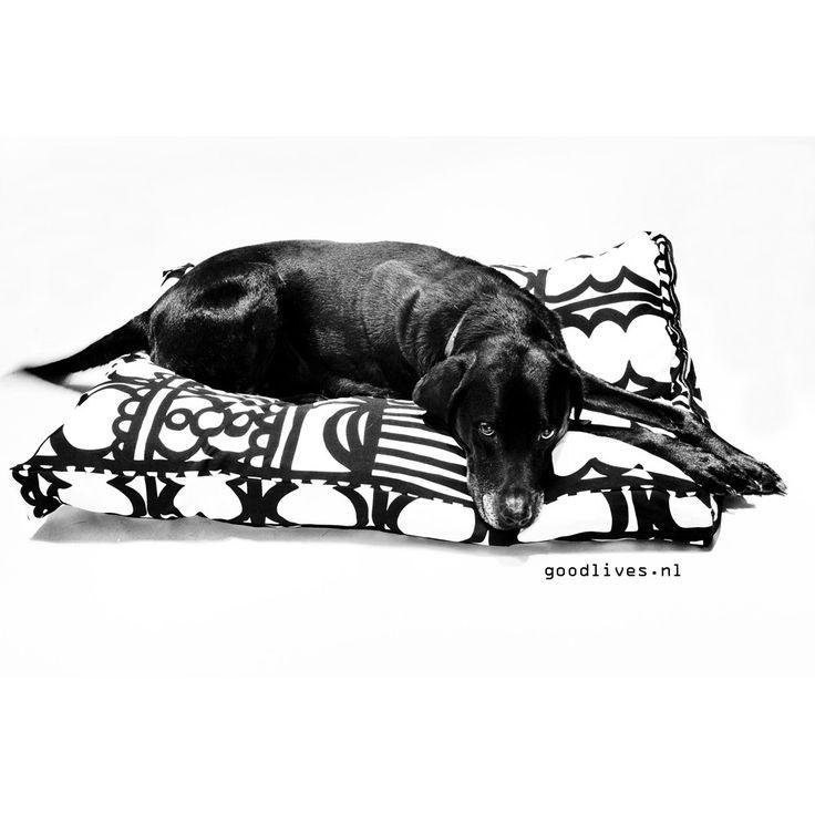 Wil je ook graag zelf een hondenkussen maken omdat degenen in de winkel niet bij je interieur passen? Kijk dan verder in deze DIY.