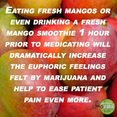 Eat fresh mangoes or mango juice 1 hour before consuming cannabis to increase happiness and ease pain. Marijuana tip. weed hack.