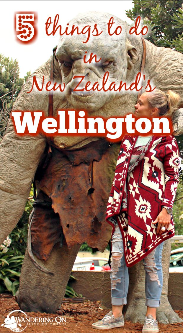 "Travelling in New Zealand and heading to it's capital city? Not sure what to do while in ""Windy Wellie""? Read our 5 Things to do in Wellington to see what you can get up to in the Lonely Planet's coolest little capital city in the world!"
