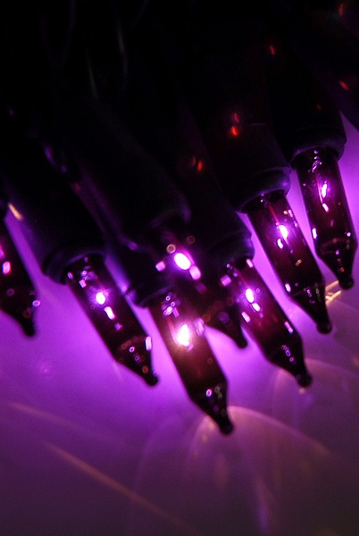 77 Best Images About Purple Christmas Tree Lights On