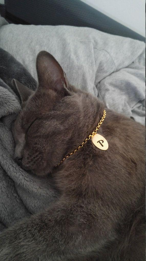 personalized Cat collar cat luxury collar cat id tag pet id tag unique cat…