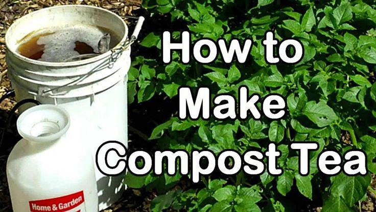 how to make shrimp compost tea