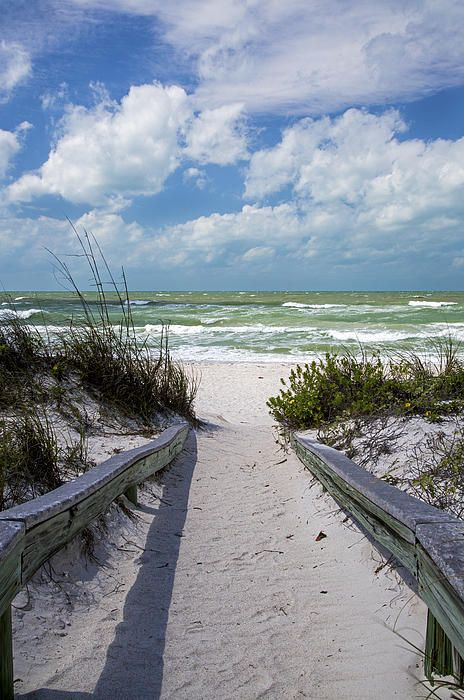 44 Best Pass-a-Grille Beach, St Pete FL Images On