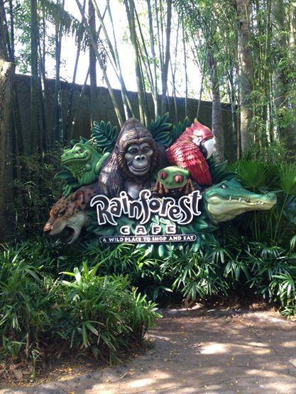 Us Disney Worlds Animal Kingdom Rainforest Cafe The Best