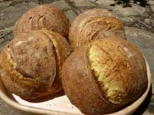 WHOLE WHEAT BREAD: Potato FLAKES vs. Potato FLOUR~usage/substitution tips for the STARCH ingredient, if using a DIY Dough Enhancer for whole wheat bread. | The Fresh Loaf