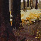 Mary Tonkin, Kish, Kalorama 2011 oil on linen 36 x 49 cm