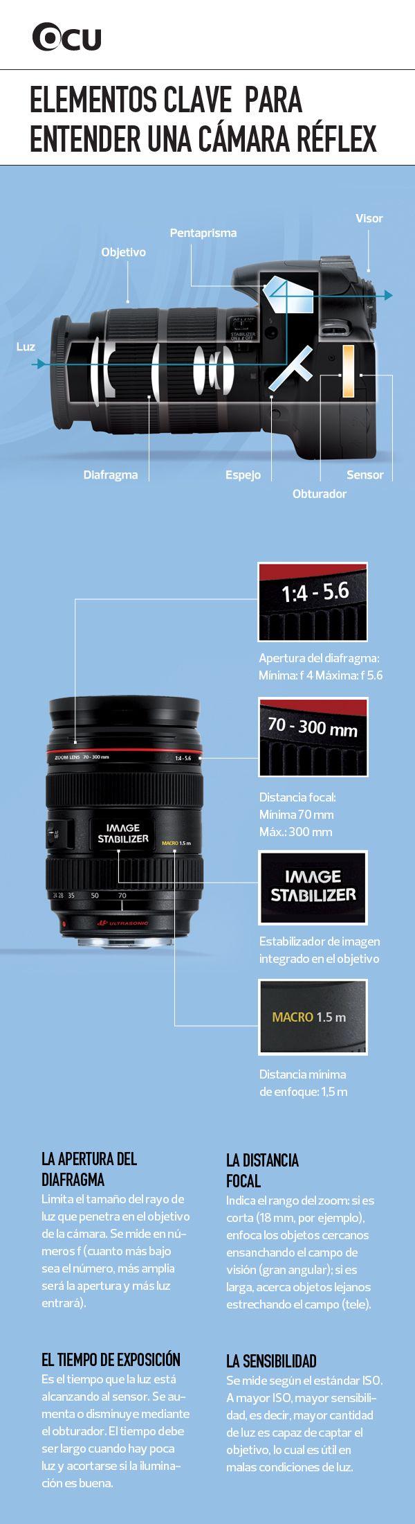 ¿Cómo funciona una cámara reflex? Repasamos sus diferentes elementos y las características que la hacen única: la apertura del diafragma, la distancia focal, el tiempo de exposición y la sensibilidad.