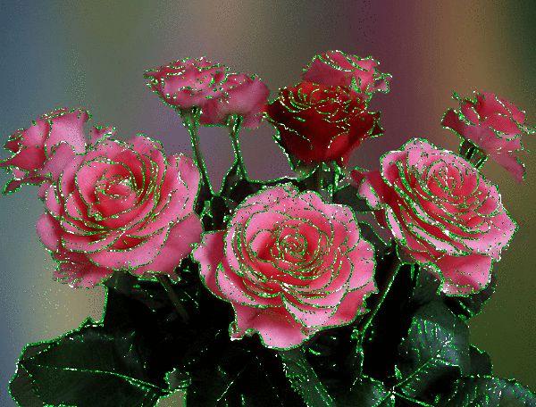 39 bisfetons avec des fleurs