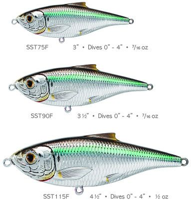 The LIVETARGET® Scaled Sardine Life-Like Lure, by Koppers Fishing