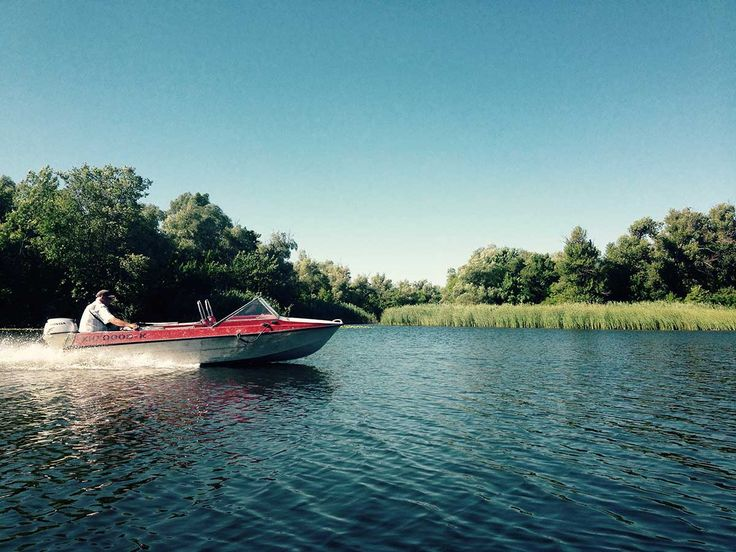 Моторная лодка на реке. Найдена старая река, о которой многие не знали. #Днепр #Плавни #лодка #рыбка #kayaks #рыбак #рыбалка на Днепре Мужчина на лодке #Вербы #деревья на берегу #Берег #реки #Херсон #Kherson I found an old river, which many did not know . #Dnepr #Plavni #boat #fish #fisherman #fishing on the Dnieper #man on the boat #Verba #trees on the #bank of the #river #Beach #Kherson #байдарка #прогулки н абайдарках